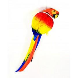 Festón Papagallo