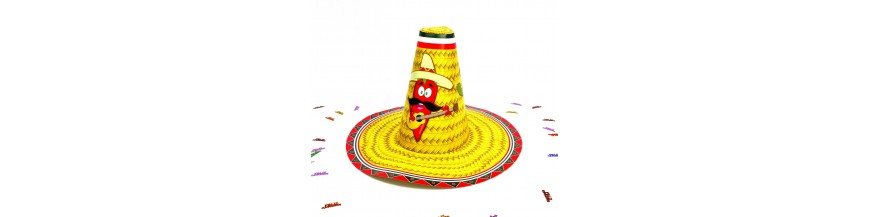Fiestas temáticas Mexicana